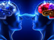 minds of human