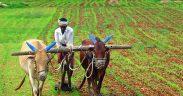 Ending farmer distress in India